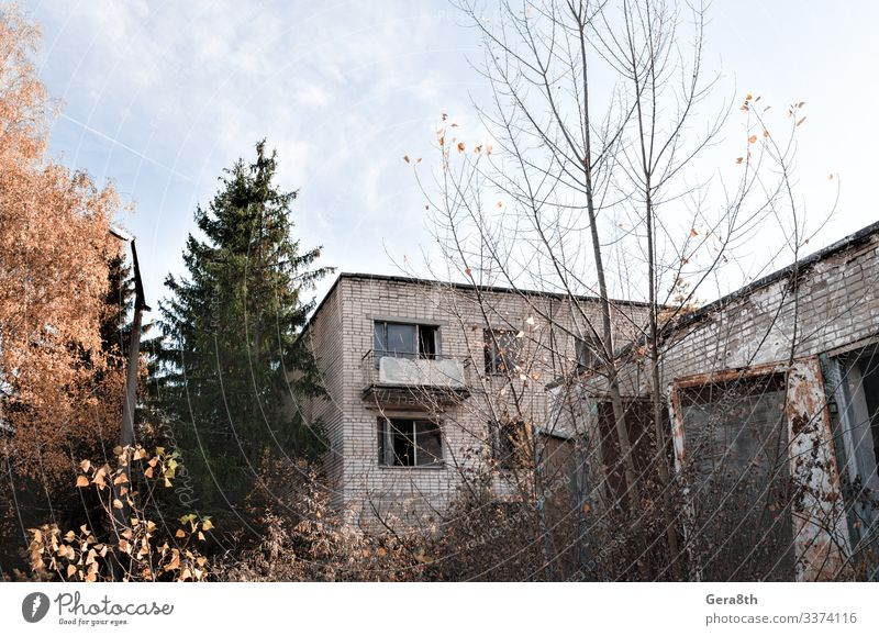 old brick house with balcony and trees in Chernobyl Sky Vacation & Travel Nature Old Plant Blue Green Landscape Tree House (Residential Structure) Leaf Street