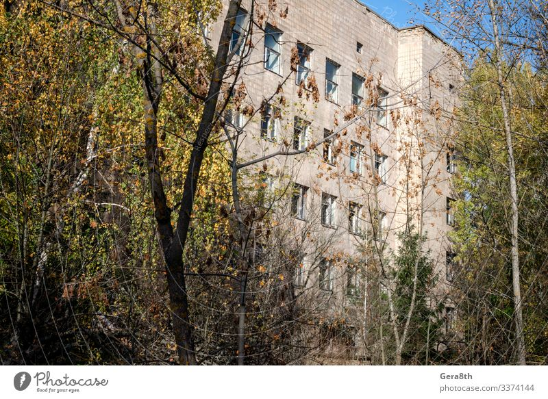 hospital in an abandoned infected city of Chernobyl Vacation & Travel Plant Tree Autumn Building Tourism Trip Threat Seasons Medication Radiation Ecological