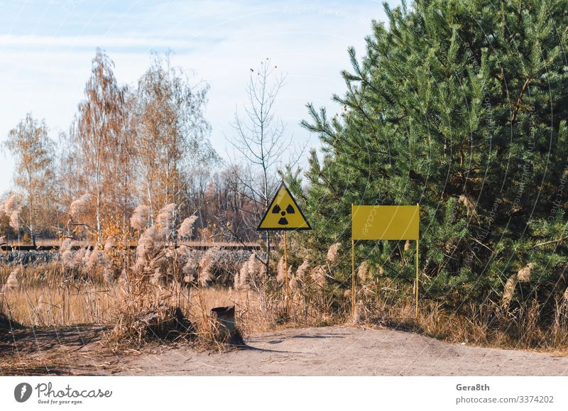 sign of radioactive contamination in a forest in Chernobyl Plate Vacation & Travel Tourism Trip Nature Landscape Plant Sky Clouds Autumn Tree Grass Forest