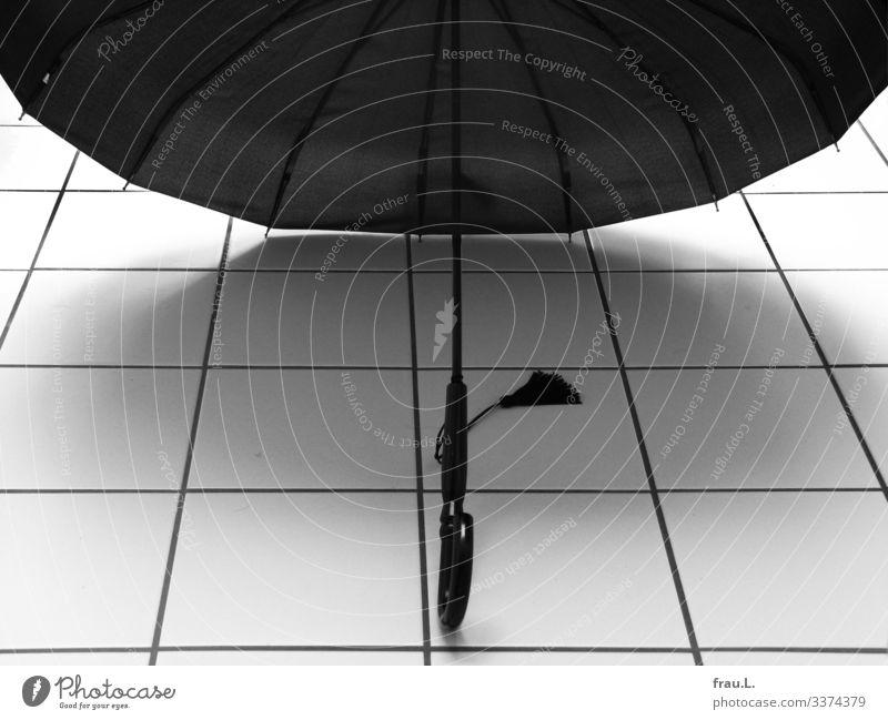 umbrella Living or residing Bathroom Stand Beautiful Umbrella Dry Tuft Tile Black & white photo Interior shot Day