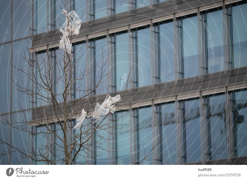 Plastic waste in branches of a bare tree in front of a glass facade Environment Bad weather Tree High-rise Bank building Stairs Window Plastic bag Trash Threat