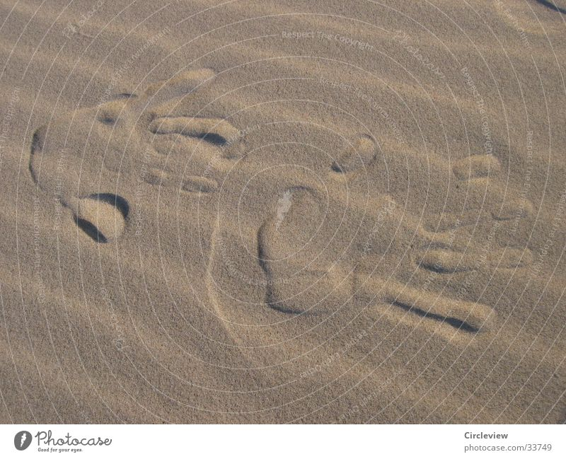 Walk of Fame at the Baltic Sea beach Beach Hand Impression Men`s hand Europe Beach dune Wind Sand Close-up Detail Desert Imprint