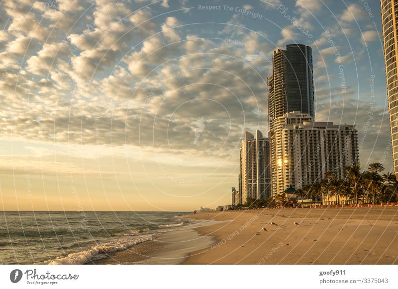 Sunny Isles Beach Florida Wide angle Panorama (View) Exterior shot Multicoloured Colour photo Wanderlust Architecture Manmade structures Town Far-off places