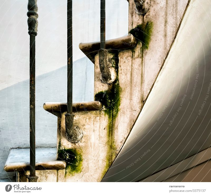 the marble steps of a spiral staircase Elegant House (Residential Structure) Moss Architecture Steel Rust Old Dirty Wet iron moisture neglected Ruined water