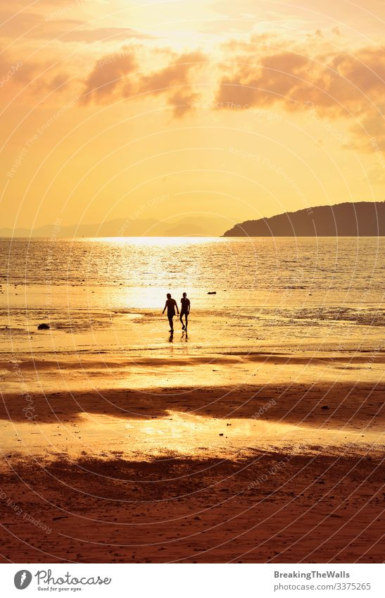 Silhouette of two people on sunset sea shore Calm Vacation & Travel Summer Beach Ocean Human being Man Adults Friendship Couple 2 Sky Clouds Horizon Weather