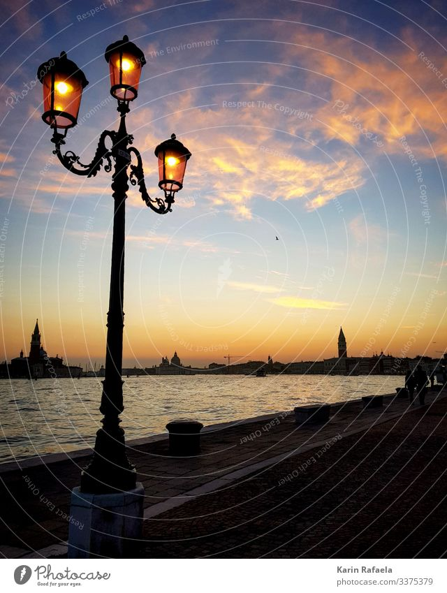 Sunset in Venice Style Vacation & Travel Tourism Freedom Sightseeing City trip Ocean Italy Town Port City Deserted Tower Tourist Attraction Basilica San Marco