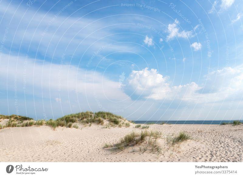 White sand beach landscape on a summer day on Sylt island Relaxation Summer Sand Beautiful weather Coast North Sea Blue Frisian island German beach Germany