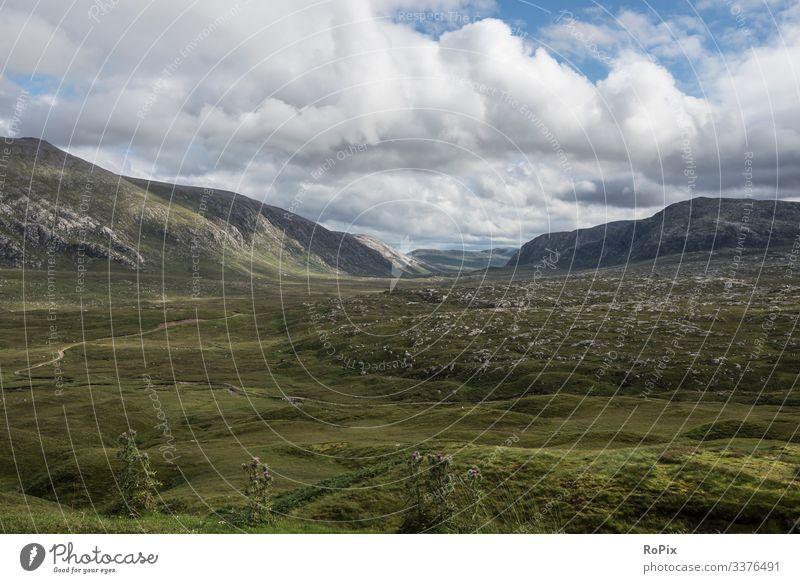 Landscape in the scottish highlands. scotland Highlands Valley Scotland sheep pasture England landscape Bridge Glencoe Natural stone wall Nature reserve