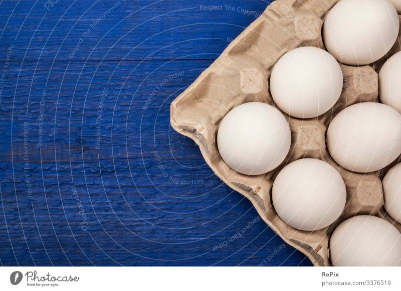Fresh eggs in a cardbox tray on blue background. Food Egg Nutrition Eating Breakfast Lifestyle Design Healthy Healthy Eating Fitness Easter Education