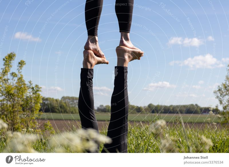 Acrobatics in the countryside Feet feet Legs Acroyoga Gymnastics balance Balance Circus Artists Sky Field Environment Ease Trust Foot-to-Foot flyers base Toes