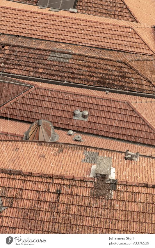 Umbrella organisation Tiled roof roofs brick houses Town settlement Chimney Bird's-eye view Porto Looking Vantage point Roofer texture Pattern Red Orange Loam