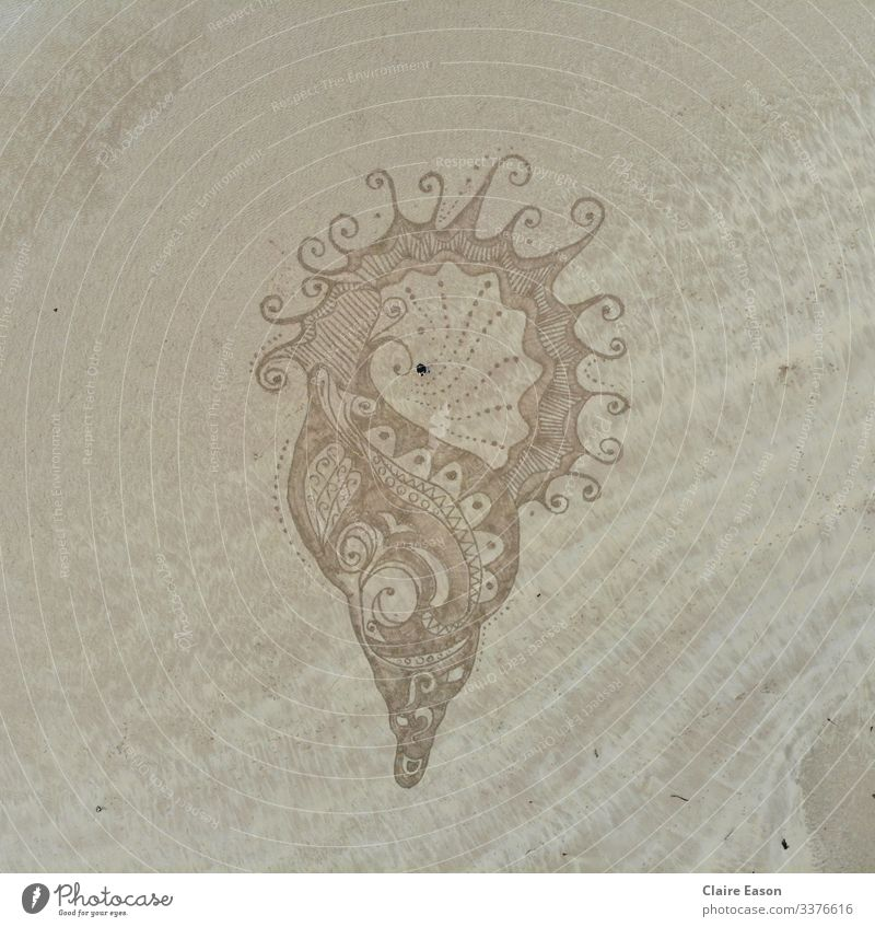Giant decorated sea shell with person for scale by dji camera Sand art beach creative large scale sustainability clean