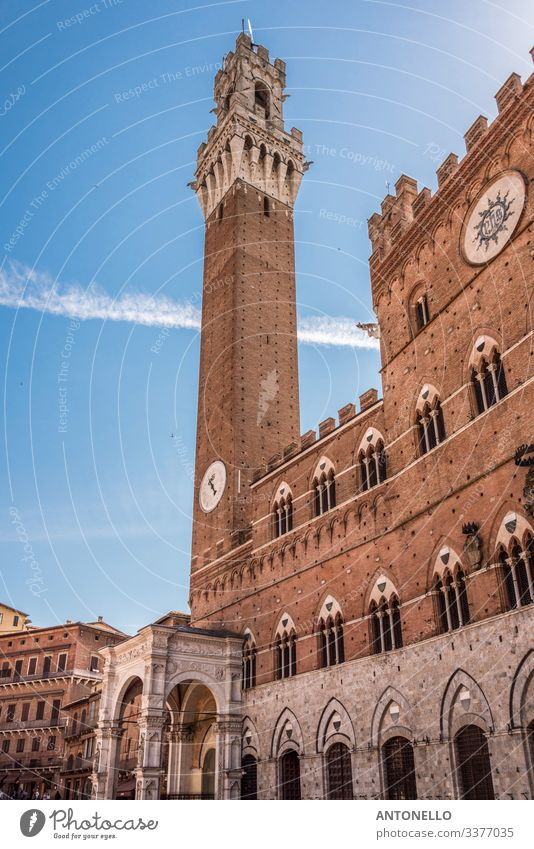 Left side of the Palazzo Comunale of Siena Elegant Vacation & Travel Tourism Summer Art Architecture Sky Cloudless sky Beautiful weather Tuscany Italy Europe