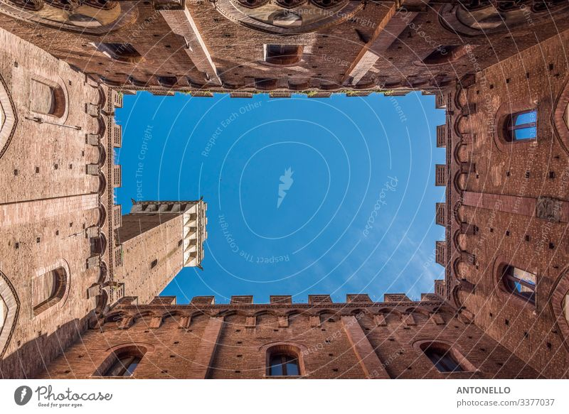 Postage stamp inside the Palazzo Comunale in Siena Vacation & Travel Tourism Summer Art Architecture Sky Cloudless sky Spring Beautiful weather Small Town
