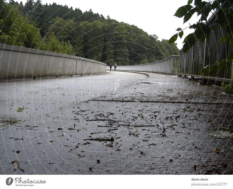 dam Wall (barrier)