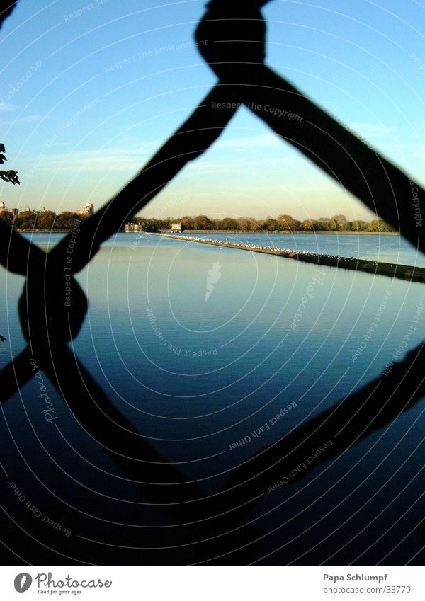 Water in the lake Lake Wire netting fence Fence Summer evening Central Park Captured Grating Dusk Blue Evening