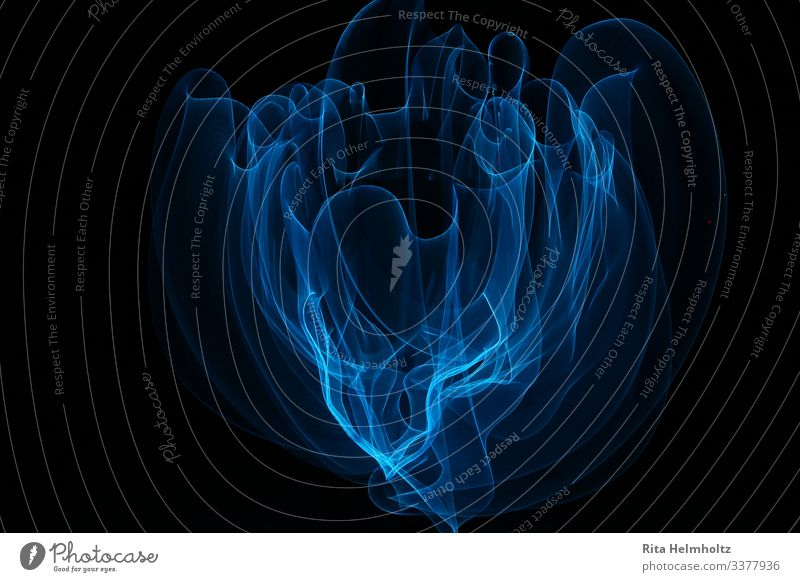 Delicate veil (LightPainting) Smoke Touch Movement Illuminate Draw Smoking Dance Dream Exceptional Fantastic Beautiful Uniqueness Wild Soft Blue Black Power