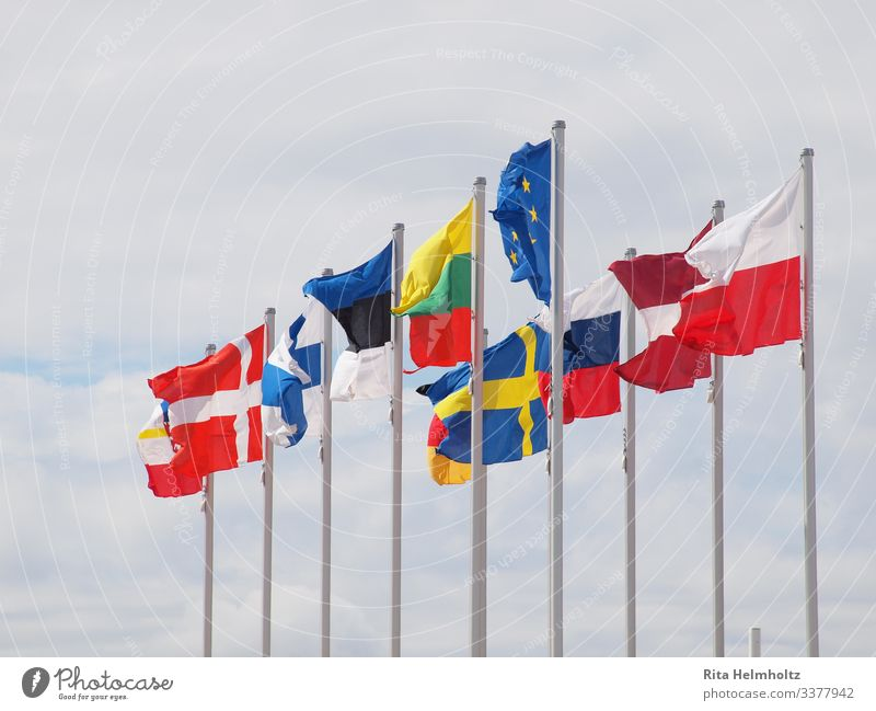 European flags Flag Friendliness Happiness Blue Multicoloured Agreed Loyal Together Society Politics and state Attachment Colour photo Exterior shot