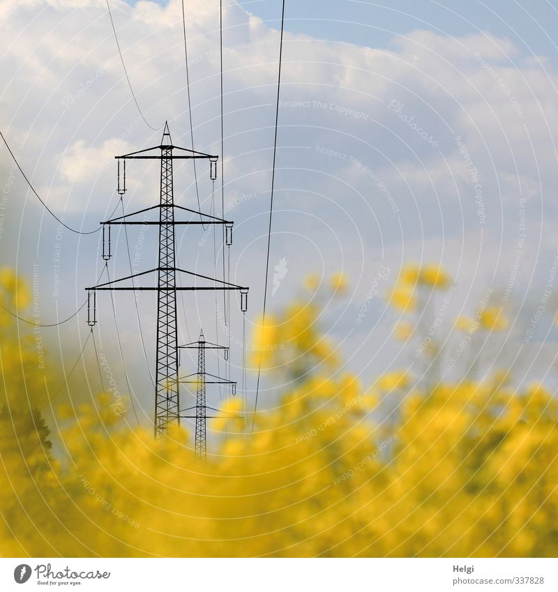 energetic Energy industry Renewable energy Electricity pylon High voltage power line Environment Nature Landscape Plant Sky Clouds Spring Beautiful weather