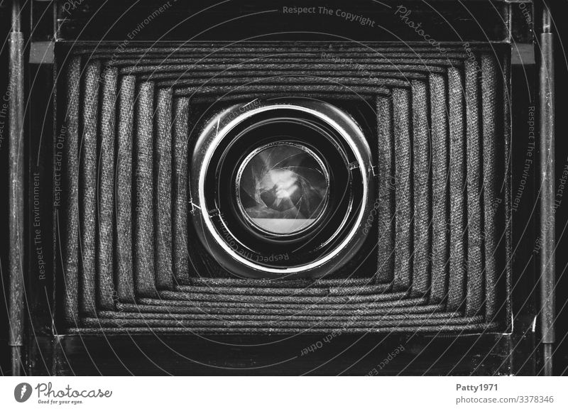 Inner life of a bellows camera Camera Bellows plate camera Aperture Objective Photography Old Complex Nostalgia Past Black & white photo Close-up Detail