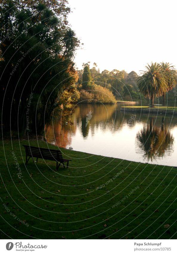 Nature Green Lake Park Bench Australia Melbourne