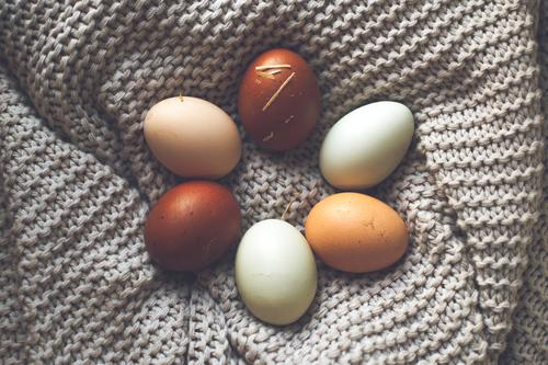 Six eggs in different natural colours laid on a grey blanket in the shape of a flower Food Egg Organic produce Biological Nutrition Easter Nature Spring Nest
