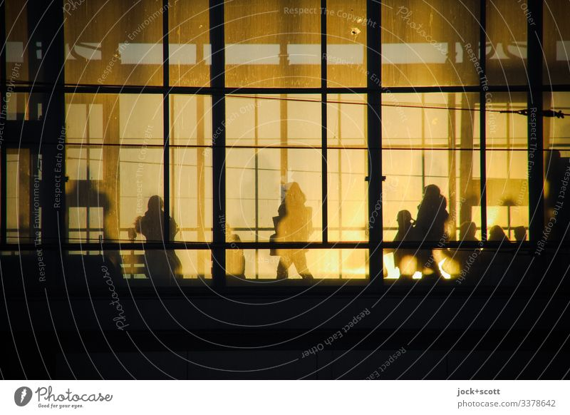 Outline of traveller on glass front in the evening sun Train station travelers Silhouette Back-light Shadow Platform Wait Low-key Sunset Sunlight