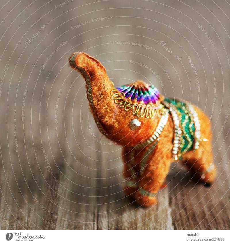 Bollywood goes Photocase Leisure and hobbies Orange Elephant Elefantears India bollywood Kitsch Animalistic Trunk Wood Things Decoration Pelt Cute Gold
