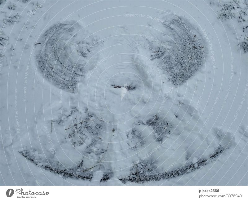 Photo of a snow angel on a path Winter Christmas & Advent Nature Vacation & Travel tree road covered snowcapped landscape Germany Frost frozen holiday idyllic