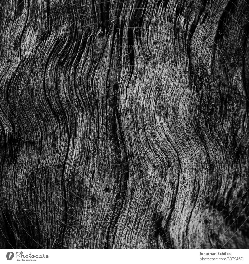Minimal black texture background wood Abstract black background Autumn Black texture Minimalism Minimalist Black backdrop background image black and white