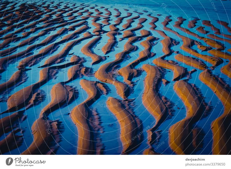 Wave pattern ( ripple mark ) is formed at low tide on the beach when the water runs off. Through the sunlight it appears in blue color. Waves Nature Ocean Water