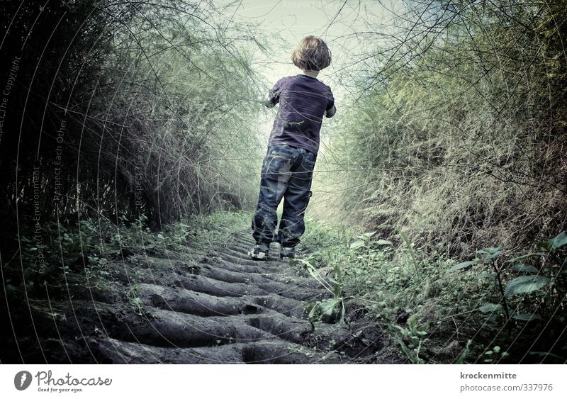 Human being Child Nature Green Plant Dark Emotions Boy (child) Lanes & trails Going Moody Fear Masculine Field Infancy Earth