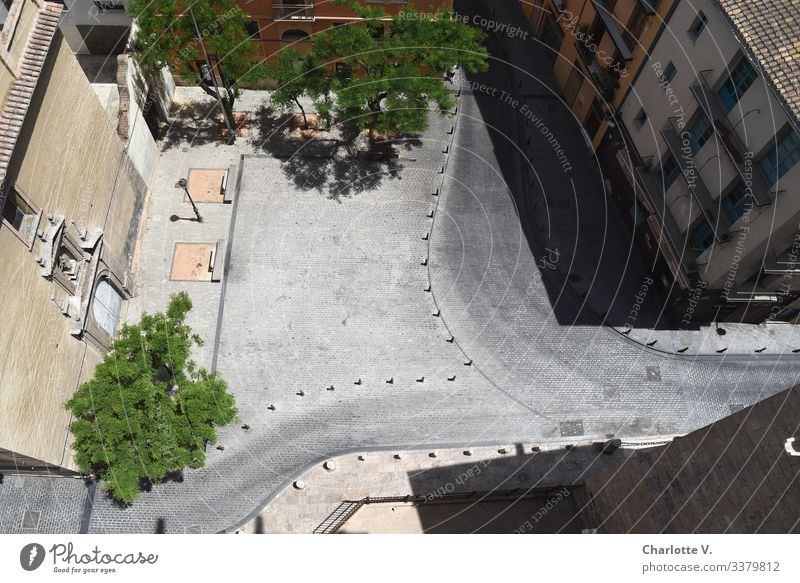 Bird's eye view of a deserted place during lunchtime. Siesta or curfew due to pandemic? Environment Plant Tree Valencia Spain Europe Town Deserted