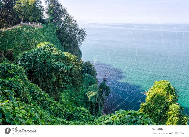 Relaxation Vacation & Travel Tourism Trip Summer Ocean Waves Mountain Nature Landscape Plant Sky Clouds Horizon Autumn Climate Warmth Tree Park Forest Hill Rock