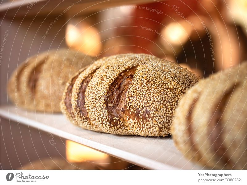 Bread Roll Nutrition Shopping Healthy Eating Tradition Baked goods baker shop Bakery Black bread bread buns bread rolls carbs Consumption Crust crusty food