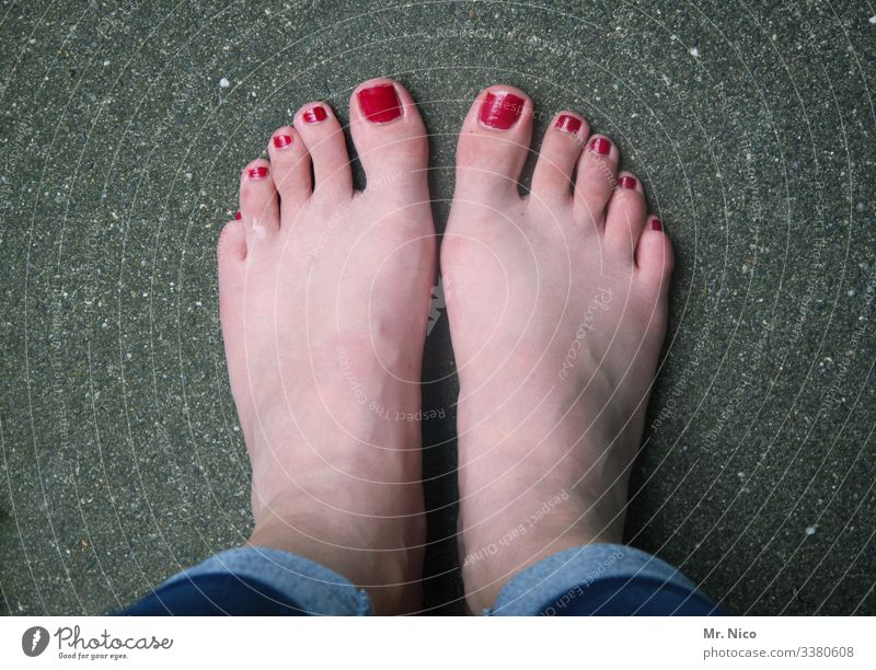 lacquered - the other way round feet Toes Varnished Asphalt Colour photo Styling Barefoot stood idle Stand toenails Bird's-eye view Wait Red Feminine Pedicure