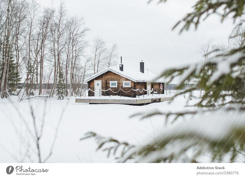Rural house in snowy forest winter tree countryside nature rural landscape white cold season leafless scenic weather tranquil travel swedish lapland norrbotten