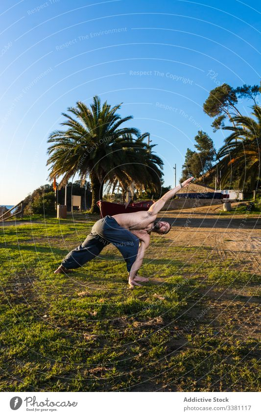 Strong man doing yoga in a park posture nature blue sky palm tropical exotic balance stretch paradise shirtless peace meditate flexible harmony male healthy fit