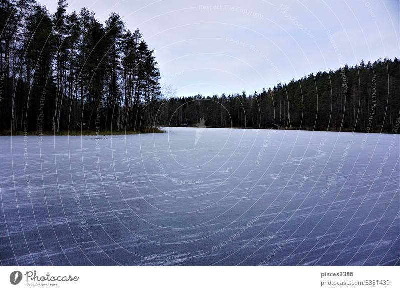 Frozen lake Haukkalampi on cloudy day in the Nuuksio Nationalpark frozen nature sky nuuksio blue sunrise finland water cold winter ice white forest espoo