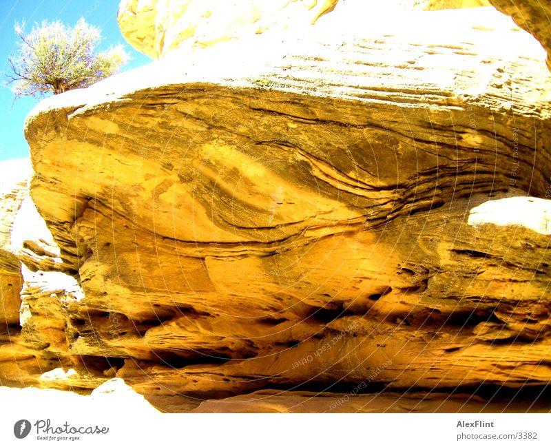 limestone Limestone Stone Rock