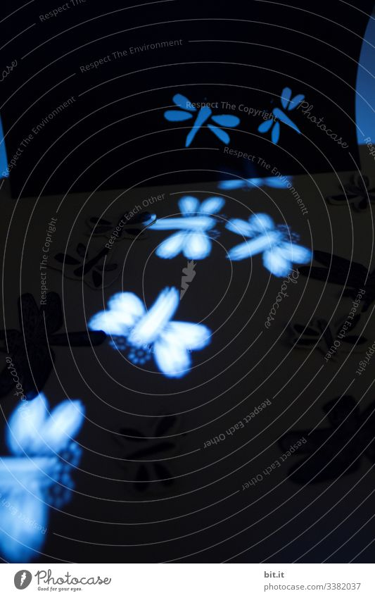 Photochallenge I Dragonflies, flying and lying, in blue light, as light apparitions and figures. Cut out of clay paper. Point of light Dance Flying Dragonfly