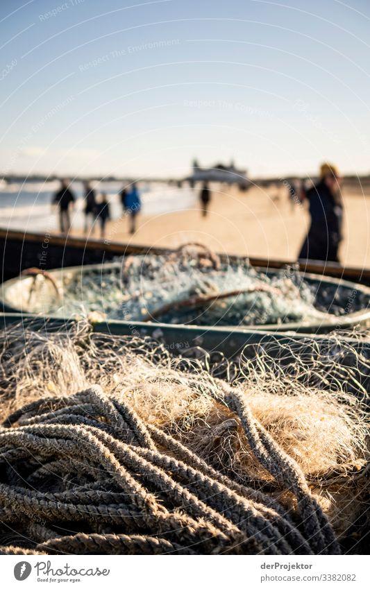 Fishing nets on the beach of Ahlbeck Sunlight Shadow To go for a walk Checkmark Rope Sea coast Sea bridge Usedom Sunrise Seagull Fishing boat fishing Winter