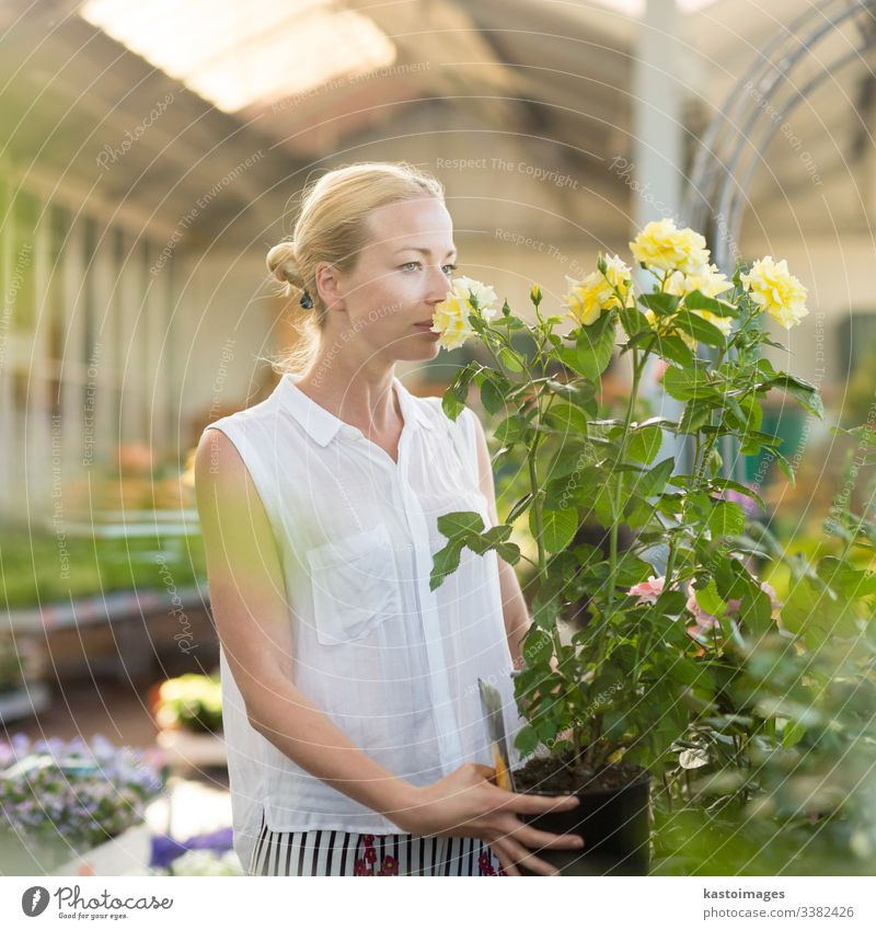 Florists woman working with flowers at greenhouse. buy roses shop business garden happy gardener horticulture store plant beautiful retailer customer lifestyle
