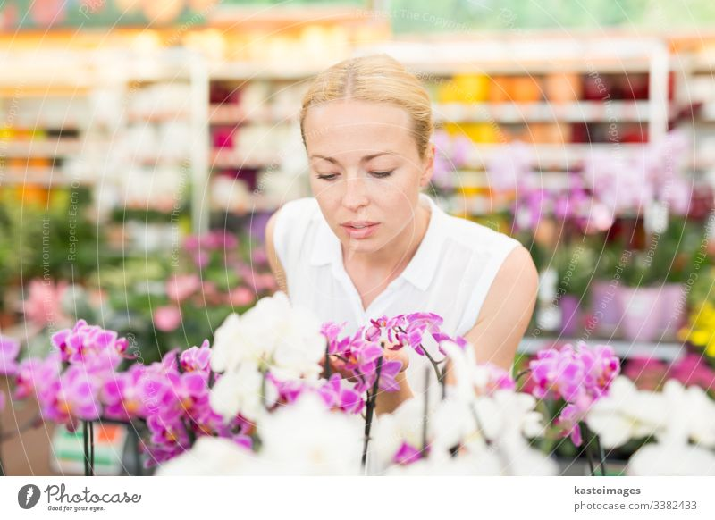 Beautiful lady smelling colorful blooming orchids. flower buy tropical greenhouse shop business garden happy gardener horticulture store plant beautiful