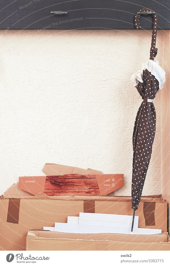 Umbrella hanging on a hook Umbrellas & Shades Café wardrobe Checkmark Hang Wall (building) Interior shot Deserted Day Hang up White Cardboard Packaging material