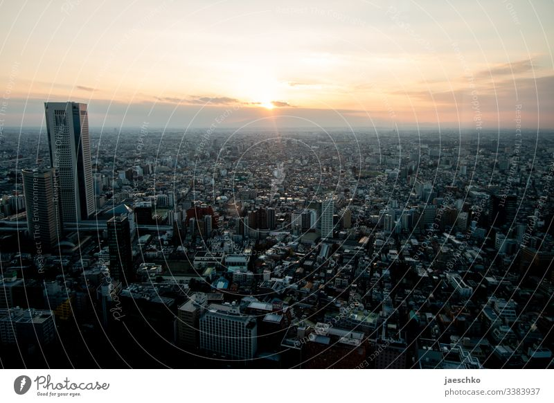 Tokyo City City of millions metropolis Skyline Japan Vantage point Town High-rise Capital city Downtown Bird's-eye view Asia overpopulation Panorama (View)