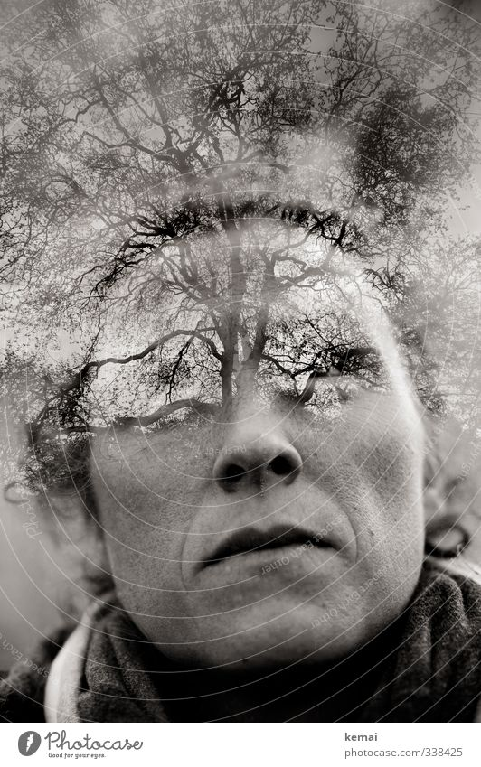 Human being Woman Nature Tree Loneliness Adults Face Environment Eyes Life Feminine Emotions Sadness Think Head Power