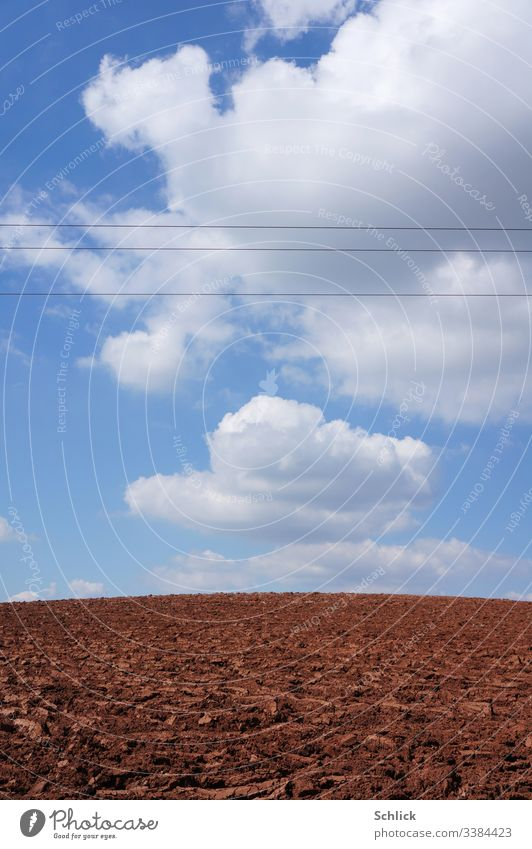 Bald fields and sky with cumulus clouds cut through by power lines Monoculture acre Field Cumulus Clouds High voltage power line Horizon Hill Manmade landscape