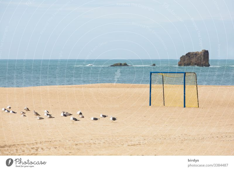 Lonely soccer goal at the deserted beach of Nazare, Portugal, a group of seagulls in the sand, Atlantic Ocean in the background and rocks in the sea Beach