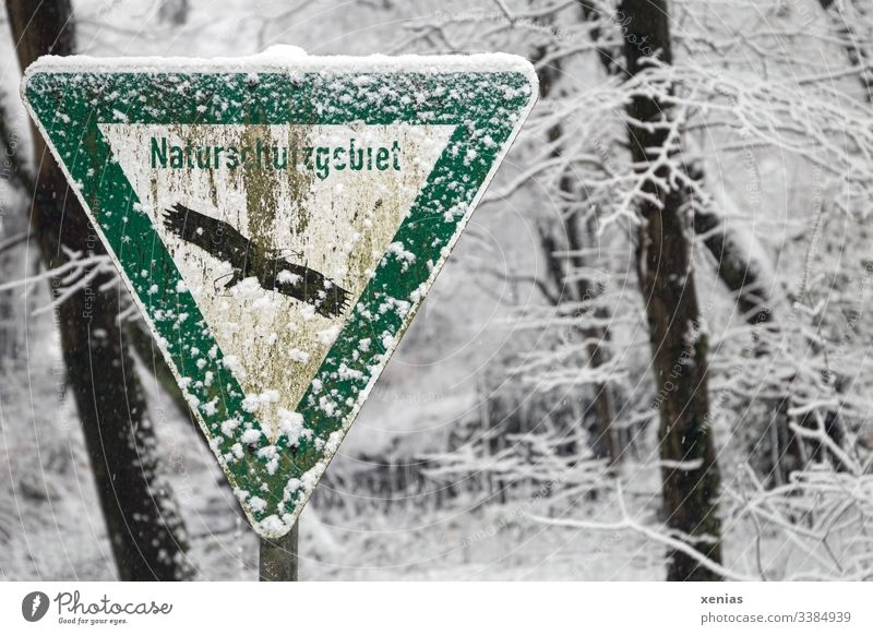 older nature reserve sign with snow Nature reserve Snow Winter Forest Cold Environment trees Weathered Old Signage White-tailed eagle